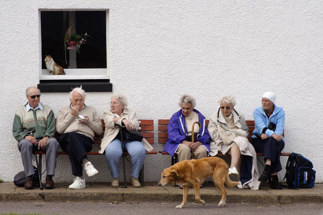 Make Their Elderly Owners Go To The Doctor Less