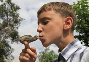 12 year boy's touching bond with tiny sparrow after nursing it back to health