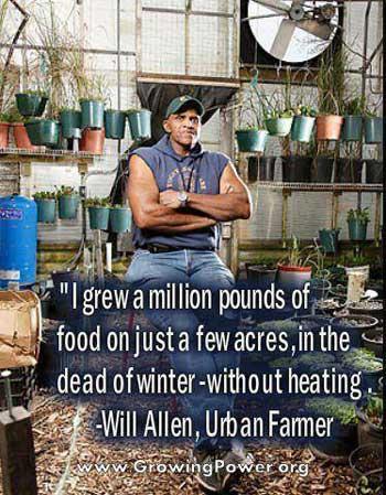 A Million Pounds on Three Acres