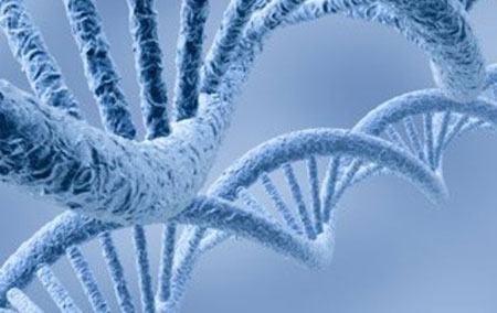Mindfulness practice can lead to epigenetic alterations of the genome