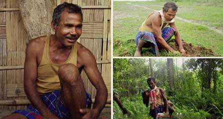 Man Planted an Entire Forest by Hand