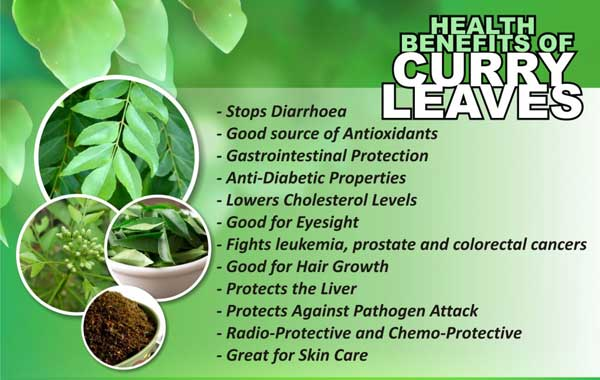 10 Amazing Health Benefits You Didn T Know About Curry Leaves