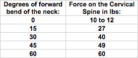 neck-chart